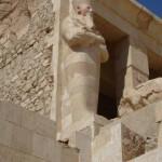 Hatshepsut Temple 7 www.egypt-nile-cruise.com